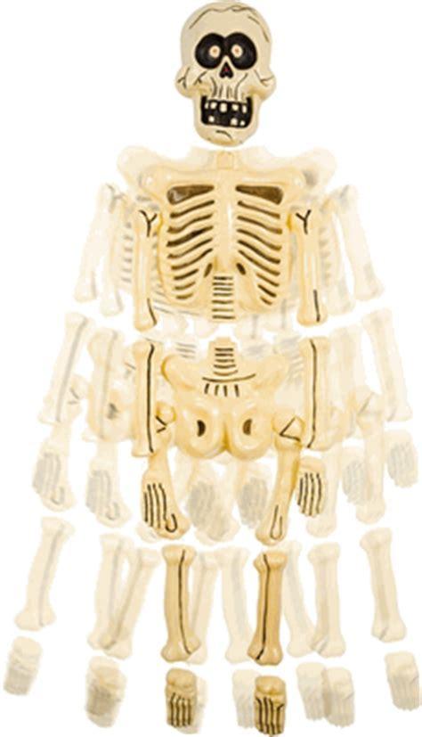 Big Head Jangles Skeleton Prop   Halloween Skeletons