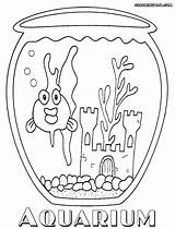 Aquarium Coloring Pages Goldfish Colorings sketch template