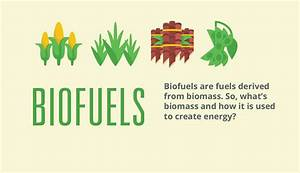 What are Biofuels?   Biofuels