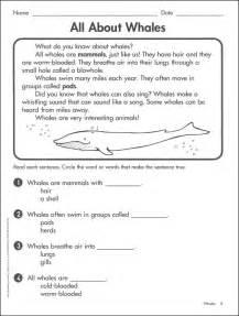 grade one reading level nonfiction reading comprehension grades 1 2 032208 details rainbow resource center inc