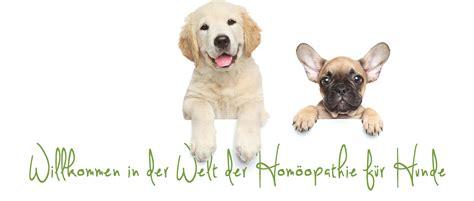 homoeopathie fuer hunde liste aller mittel globuliwelt