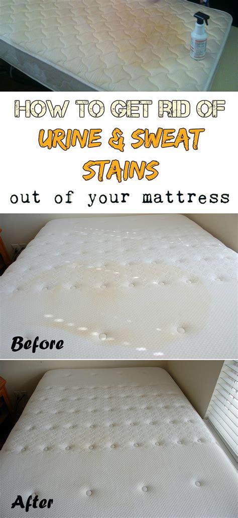 rid  urine  sweat stains