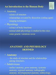 Anatomy And Physiology Definitions