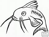 Catfish Coloring Pages Drawing Fish Clip Printable Channel Clipart Template Colouring Redtail Sketch Bullhead Getdrawings Clipartbest Coloringpages101 Library sketch template
