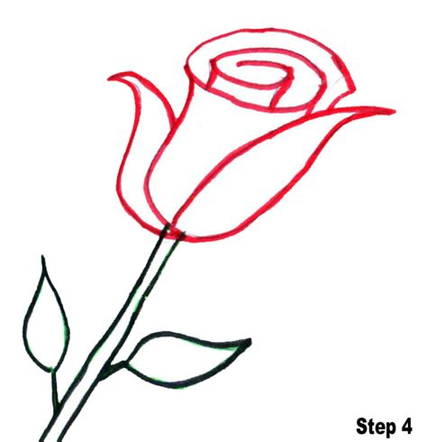 best flower bouquets line drawings of roses clipart best