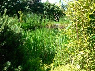 Garten Und Landschaftsbau In Hamm by Privatg 228 Rten Garten Und Landschaftsbau Helm Gmbh Hamm