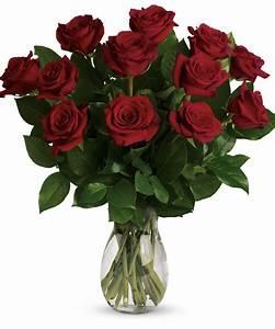 1 Dozen Premium Red Roses - White Plains & Yonkers, New York