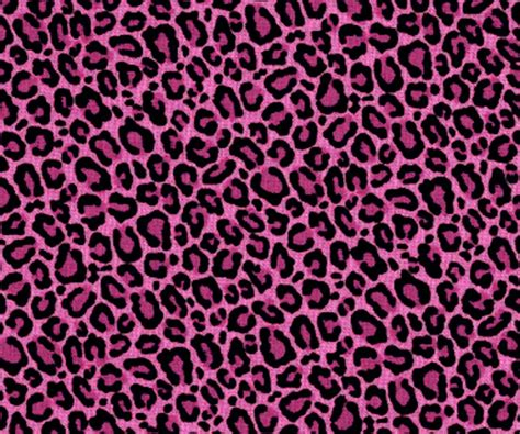 Animal Print Pink Wallpaper - pink leopard wallpaper wallpapersafari