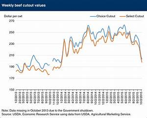 21 Images Cattle Prices Chart