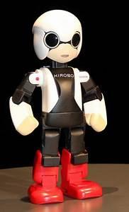 112 best images about Domestic Robots on Pinterest
