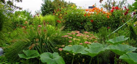 Der Garten Der Qualen by Kleingarten Finden Die Qual Der Wahl