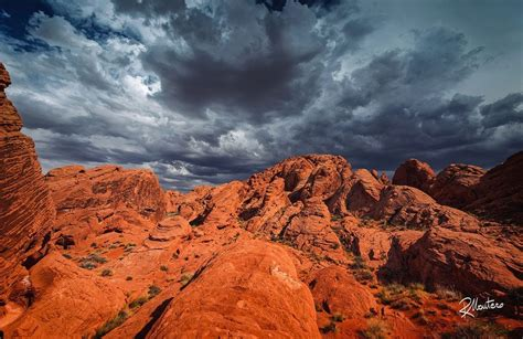 american land photography tours landscaping