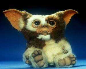 The gallery for --> Gremlins Gizmo Cute