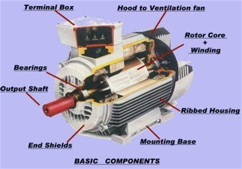 Electric Motor Components by Basic Electric Motor Components Free Energy Energia