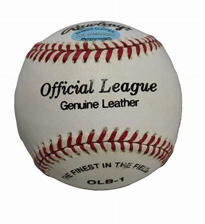 Clipper Yankee Dimaggio Baseball Joe Signed