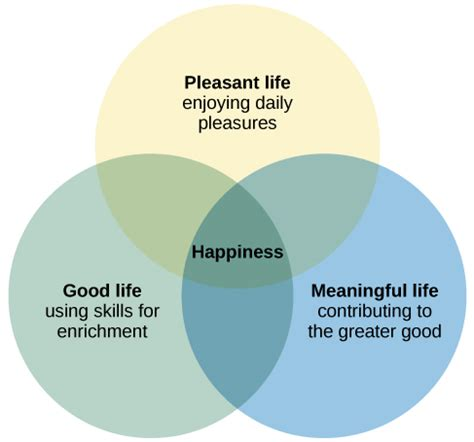 pursuit  happiness introductory psychology