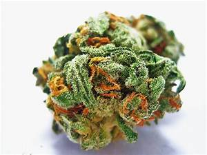 how to cure buds fast