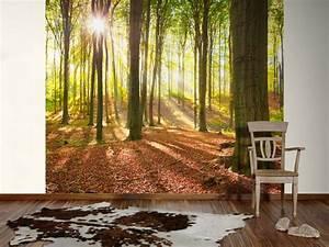 Fototapete Wald Hause Deko Ideen