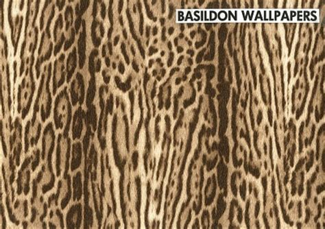 Animal Print Wallpaper Borders Uk - animal print wallpaper borders uk bedwalls co