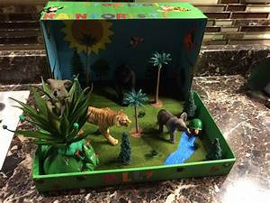 Ally's Tropical rainforest biome project for school ...
