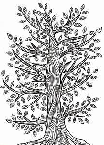 Dessin Fait Main : dessin graphique fait main d 39 un arbre avec des feuilles illustration stock image 62546694 ~ Dallasstarsshop.com Idées de Décoration