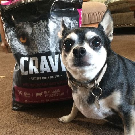 food dog crave half sample grain past october received exchange press chewy protein