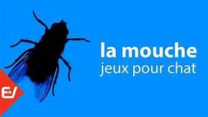 La Mouche  Jeu Vid U00e9o Pour Les Chats Seulement