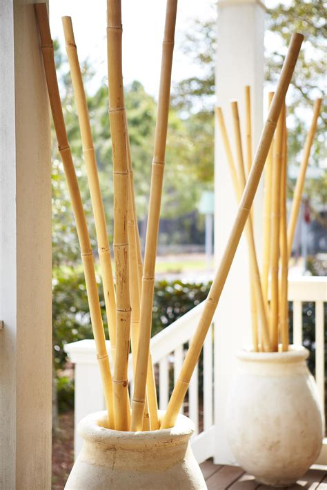 french style outdoor pots  bamboo deco murale