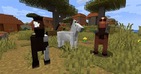 minecraft horses horse eat tame guide variations different games pc