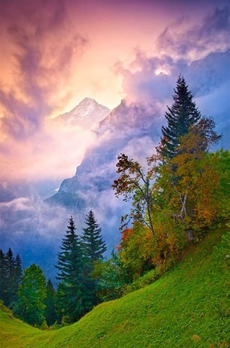 Honeymoon Bernese Alps Switzerland 2047792 Weddbook