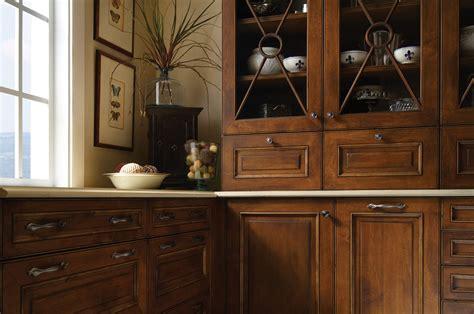 unique  exotic ideas  kitchen cabinet door inserts