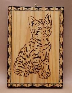 Pyrogravure Sur Bois Professionnel : chat pyrogravure pyrogravure pinterest pyrogravure chats et gravure ~ Nature-et-papiers.com Idées de Décoration