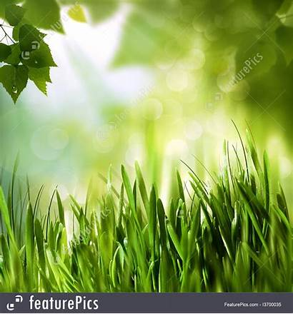 Environmental Backgrounds Abstract