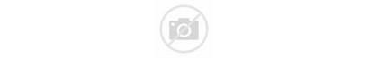 Falcon Charter 2000lx Jet Interior