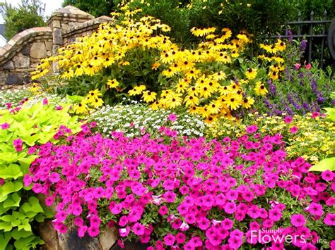 best flowers for small gardens 10 small flower garden ideas to build a serene backyard retreat