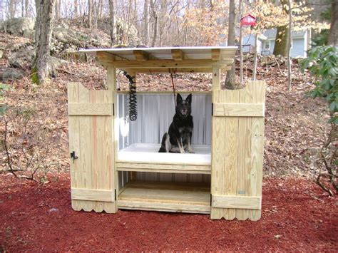 best self cleaning litter box 17 best images about diy pets on cat litter