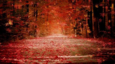 Animated Autumn Wallpaper - autumn animated hd wallpaper the wallpaper database