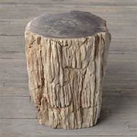 wood stump table Petrified Wood Stump End Table - The Green Head