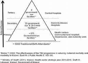 Maternal Healthcare Delivery System In Malawi