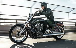 Harley V Rod : 2017 harley davidson v rod muscle youtube ~ Maxctalentgroup.com Avis de Voitures