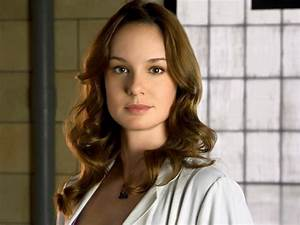 Sarah Wayne Callies Photo Gallery1 | Tv Series Posters and ...