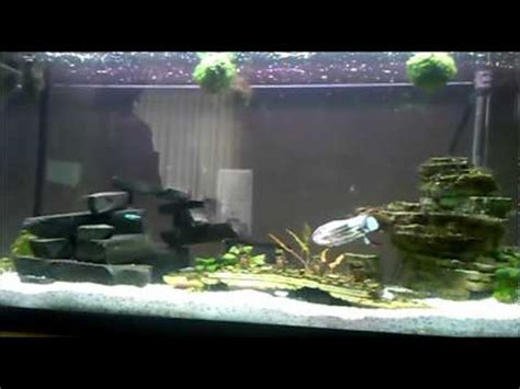 Wars Fish Tank Decorations by Quot Ode To Wars Quot Submarine Remote Controlled Titanic