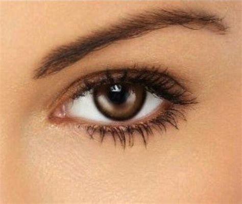 perfect natural makeup  brown eyes fashion pinterest makeup  definitions