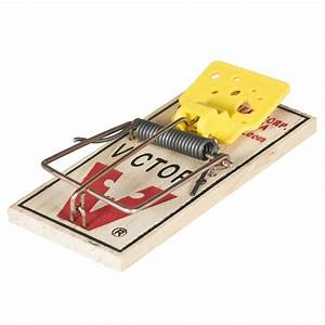 Victor Easy Set U00ae Mouse Trap  2