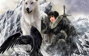 A Song Of Ice And Fire Birds Crows Direwolf Fantasy A