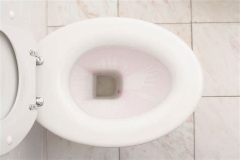 my toilet won t fill up with water how to acid wash brick pavers hunker