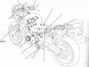Ignition Timing - Honda Cbr 600 1995-1996