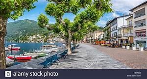 Seepromenade Von Ascona  Tessin  Schweiz