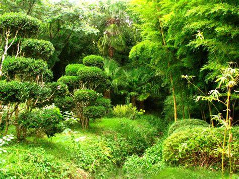 Jardin De Bambou Lyon by Jardin Les Bambous De Planbuisson Cultural Heritage