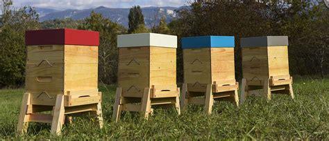 installer une ruche dans son jardin des abeilles dans le